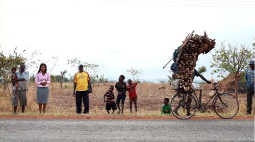 biomass-energy-conservation-programme Malawi-4