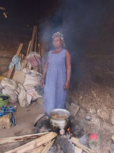 Clean Cook Stoves in Sub-Saharan Africa-2