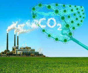 capturing CO2 cartoon